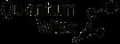 QuantumWise logo